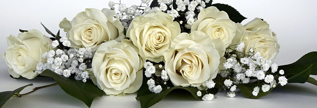 buy online white roses in India