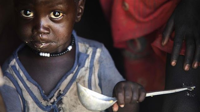 World hunger on rise again due to conflicts, climate: Food and Agriculture Organization of the United Nations