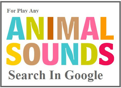 Google Ke Naye Tools Ki Help Se Sune Animals Ki Sound