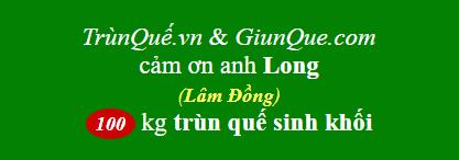 Trùn quế Đam Rông
