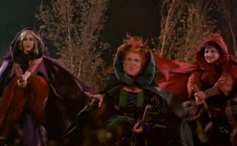 hocus pocus net worth