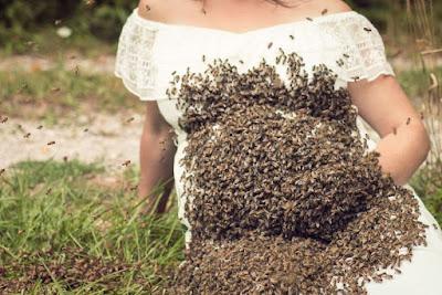 Gestante faz ensaio fotográfico com mais de 20 mil abelhas sobre sua barriga