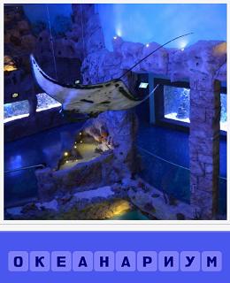 еще 460 слов показан океанариум с рыбами 3 уровень