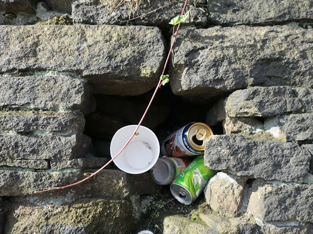 Polystyrene cup and metal cans stashed where a stone is missing in a wall with convovulus hanging down.