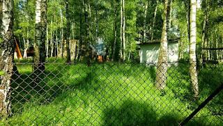 Nasze stare pole namiotowe