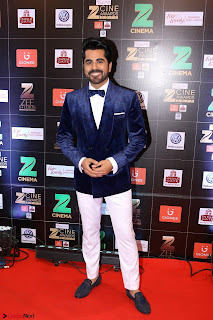 Bollywood Celebrities on the Red Carpet Of Zee Cine Awards 2017 Exclusive 119.JPG
