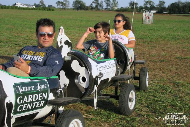 Cow Train at the Shipshewana Corn Maze