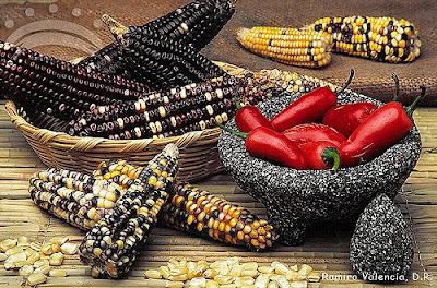 Biodiversidad y cultura