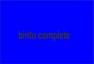 bintu complete hausa novel