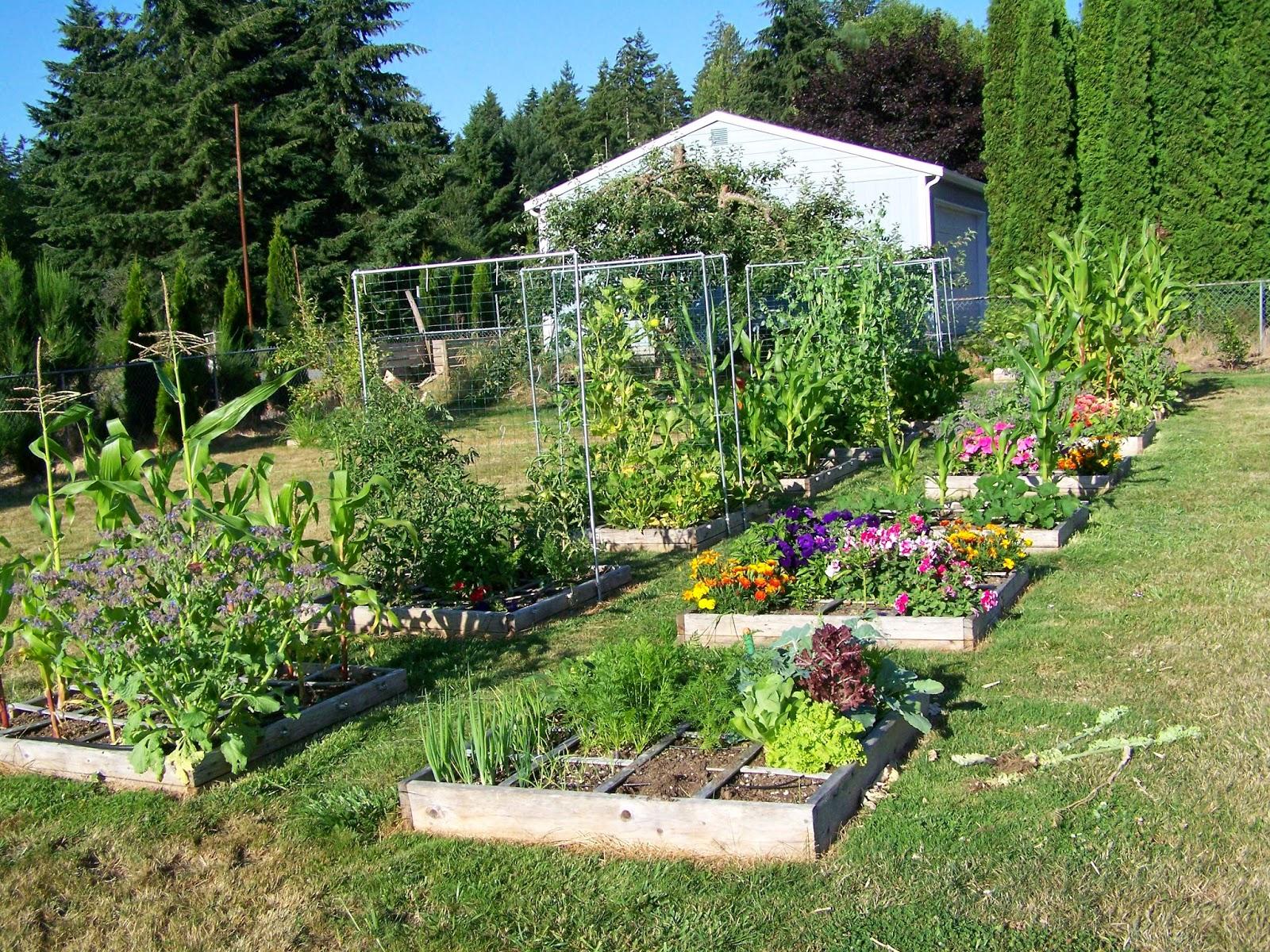 Square Foot Gardening 10 Raised Garden Beds Copyright Adrienne Z. Milligan