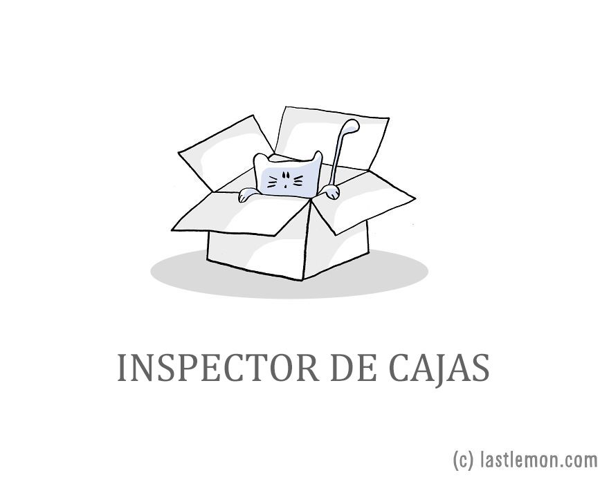 Profesiones ideales gatos