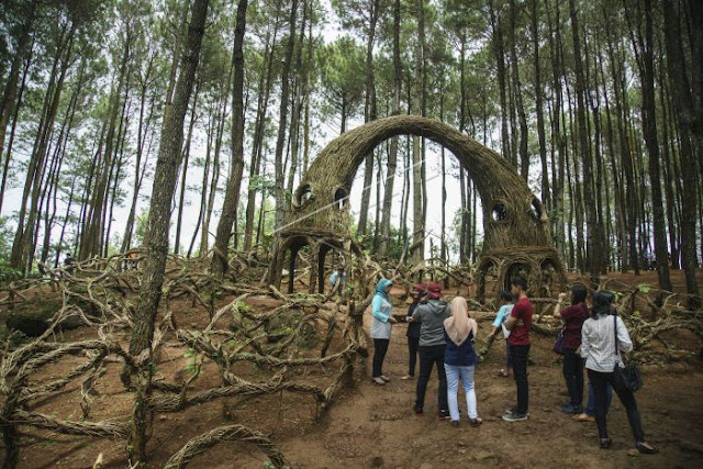 Rute Jalan ke Hutan Pinus Pengger Bantul, Destinasi Wisata Malam