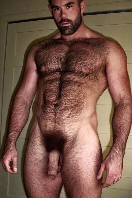 tumblr español gay peludo