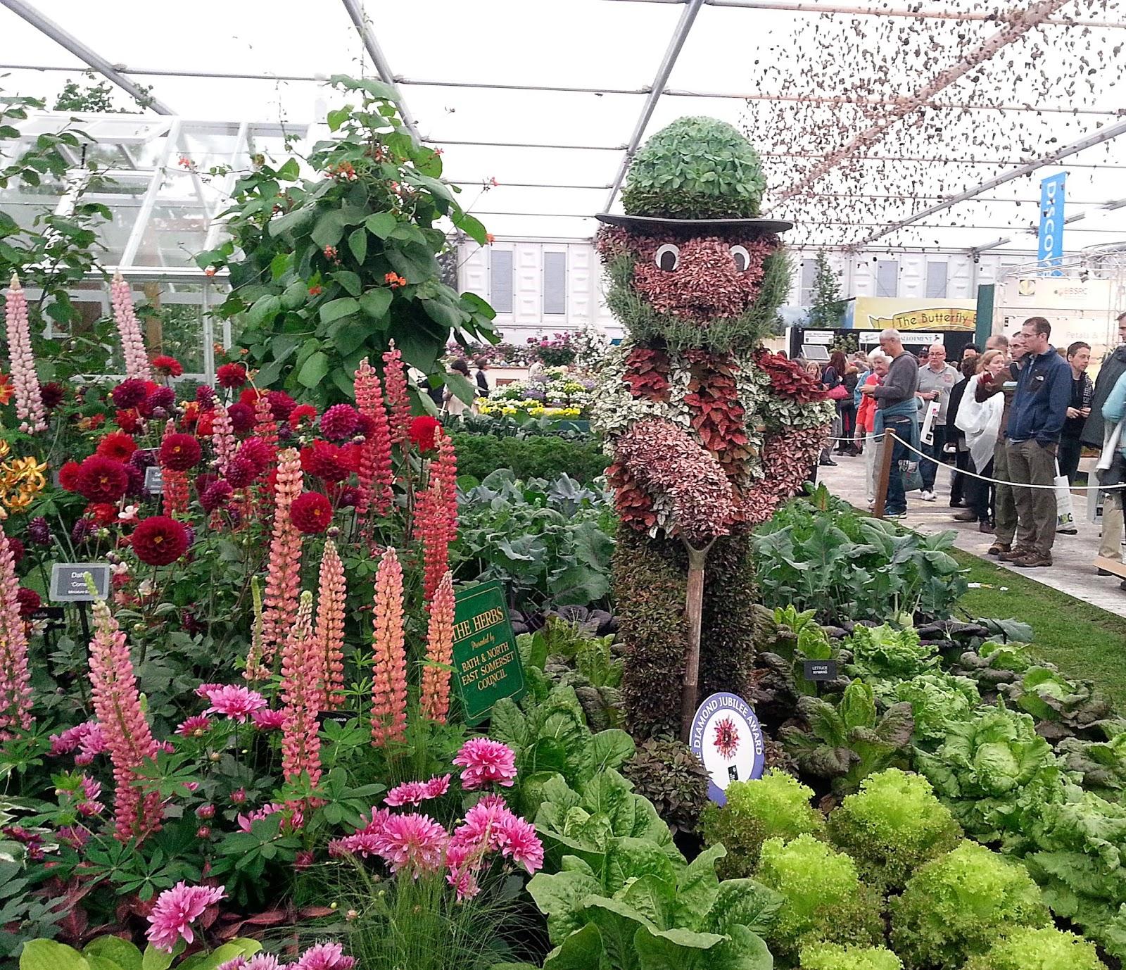Flower Garden: Kelli's Northern Ireland Garden: Chelsea Flower Show