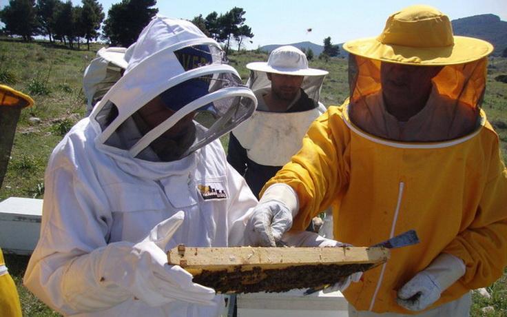 Εκπαιδευτική ημερίδα του Μελισσοκομικού Συλλόγου Κεντρικού Έβρου