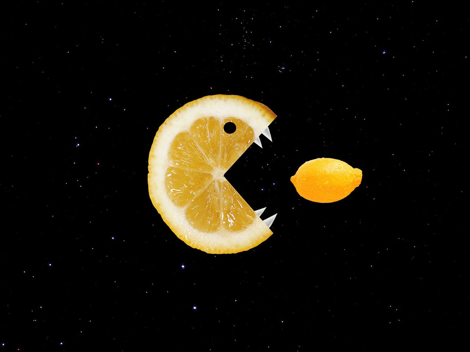 3d Wallpaper For Galaxy Y Wallpapers Funny Lemon Wallpapers