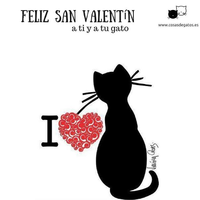 feliz san valentin a ti y a tu gato