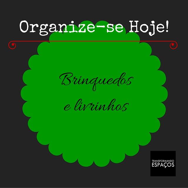 Desafio Organize-se Hoje! | Organize os Brinquedos e Livrinhos