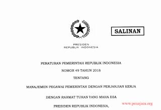 Peraturan Pemerintah Nomor 49 Tahun 2018 tentang Manajemen PPPK format PDF