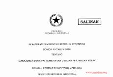 Peraturan Pemerintah Nomor 49 Tahun 2018 tentang Manajemen PPPK