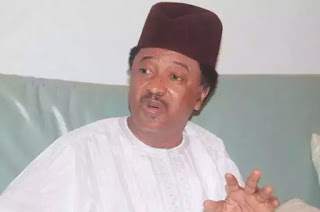 Sani Reacts To Buhari Being Dead, Cloned