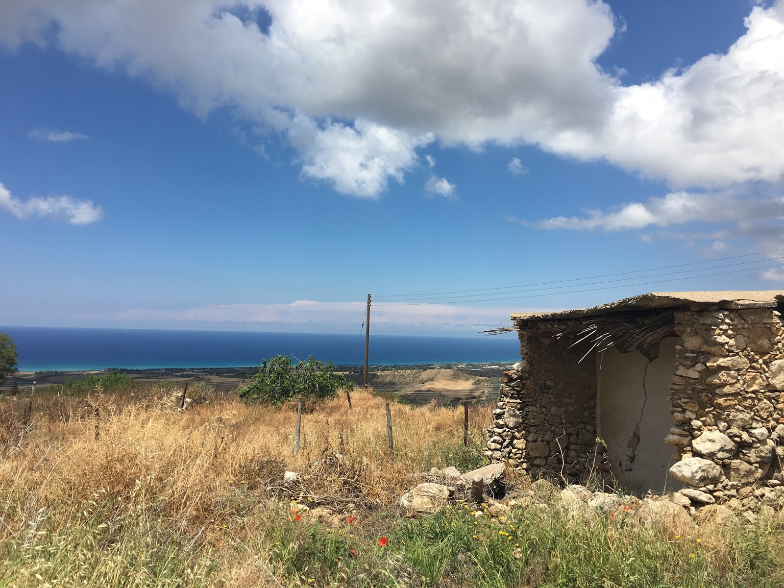 Sweet Allure: My Cyprus Photo Diary Part 1