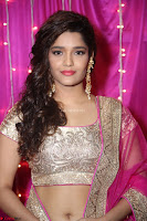 Ritika Sing in Golden Pink Choli Ghagra Cute Actress Ritika Sing ~  028.JPG