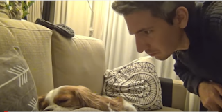 Dude Lets His Dog Know How Loud Her Snoring Is By Waking Her Up With The Sound Of Her Own Snoring!