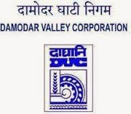 Damodar Valley Corporation DSC