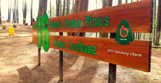 wisata hutan pinus pal 16 cikole lembang
