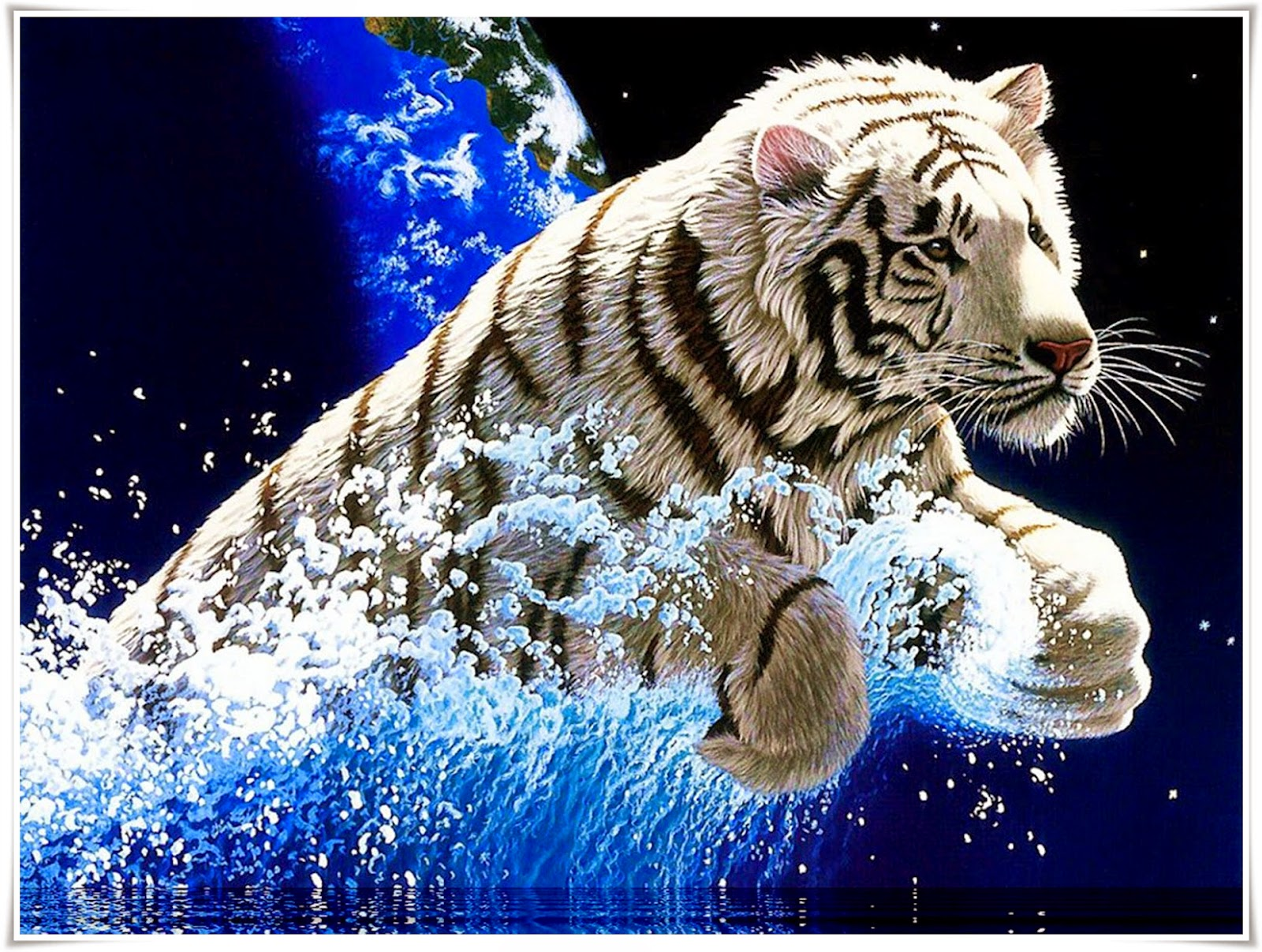 Ali 3d Name Wallpaper Free Download Harimau Nama Gambar Binatang A Z