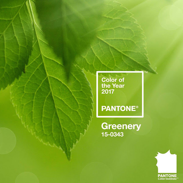 Color of the Year: Pantone