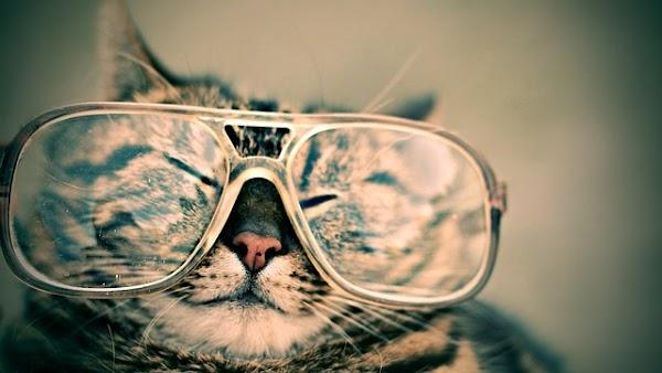 Ini Dia 5 Cara Paling Mudah Untuk Menjaga Kesehatan Mata