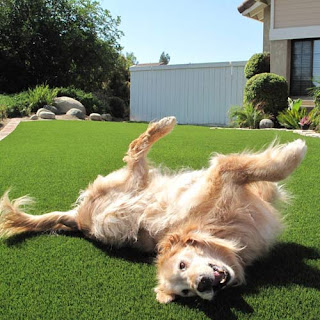 Greatmats artificial grass for dog areas