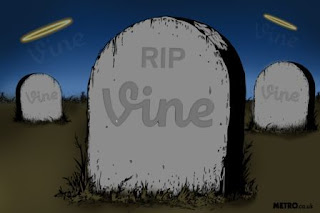 Pluck 4 Lessons Learned From Applications closed the Vine