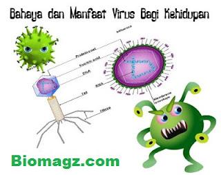 Bahaya dan Manfaat Virus Bagi Kehidupan (Mutasi, Penyebaran, Anti Bakterial, Pembuatan Insulin dan Vaksin)