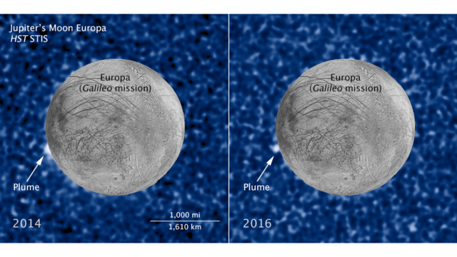 These composite images show a suspected plume of material erupting two years apart from the same location on Jupiter's icy moon Europa. The images bolster evidence that the plumes are a real phenomenon, flaring up intermittently in the same region on the satellite.  Both plumes, photographed in ultraviolet light by NASA's Hubble's Space Telescope Imaging Spectrograph, were seen in silhouette as the moon passed in front of Jupiter.  The newly imaged plume, shown at right, rises about 62 miles above Europa's frozen surface. The image was taken Feb. 22, 2016. The plume in the image at left, observed by Hubble on March 17, 2014, originates from the same location. It is estimated to be about 30 miles high. The snapshot of Europa, superimposed on the Hubble image, was assembled from data from NASA's Galileo mission to Jupiter.  The plumes correspond to the location of an unusually warm spot on the moon's icy crust, seen in the late 1990s by the Galileo spacecraft. Researchers speculate that this might be circumstantial evidence for water venting from the moon's subsurface. The material could be associated with the global ocean that is believed to be present beneath the frozen crust. Science Credit: NASA, ESA, and W. Sparks (STScI);  Illustration Credit: NASA, ESA, W. Sparks (STScI), and the USGS Astrogeology Science Center