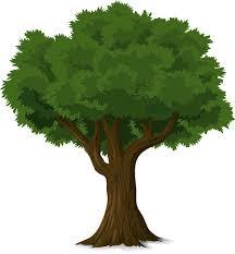 पेड़ बचाओ पर नारे Ped bachao slogan in hindi - mehtvta