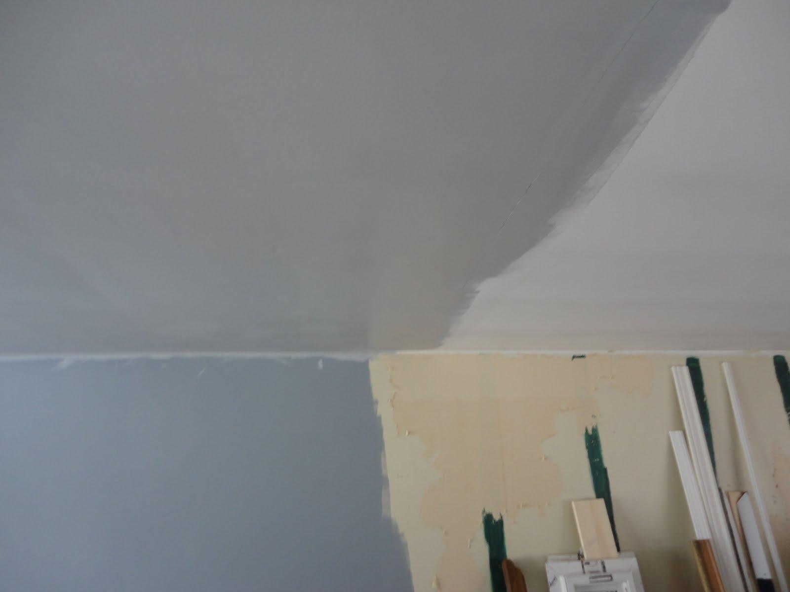Behr Texture Ceiling Paint