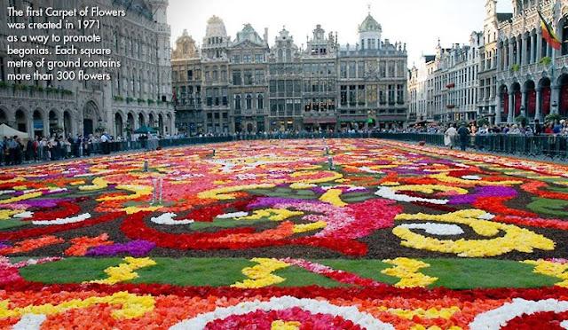 Brussells in bloom
