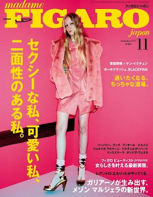 madame FIGARO japon (フィガロ ジャポン) 2017年11月号 raw zip dl