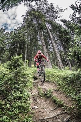 Trail von der Flatschspitze am Brenner, MTB, Mountainbike