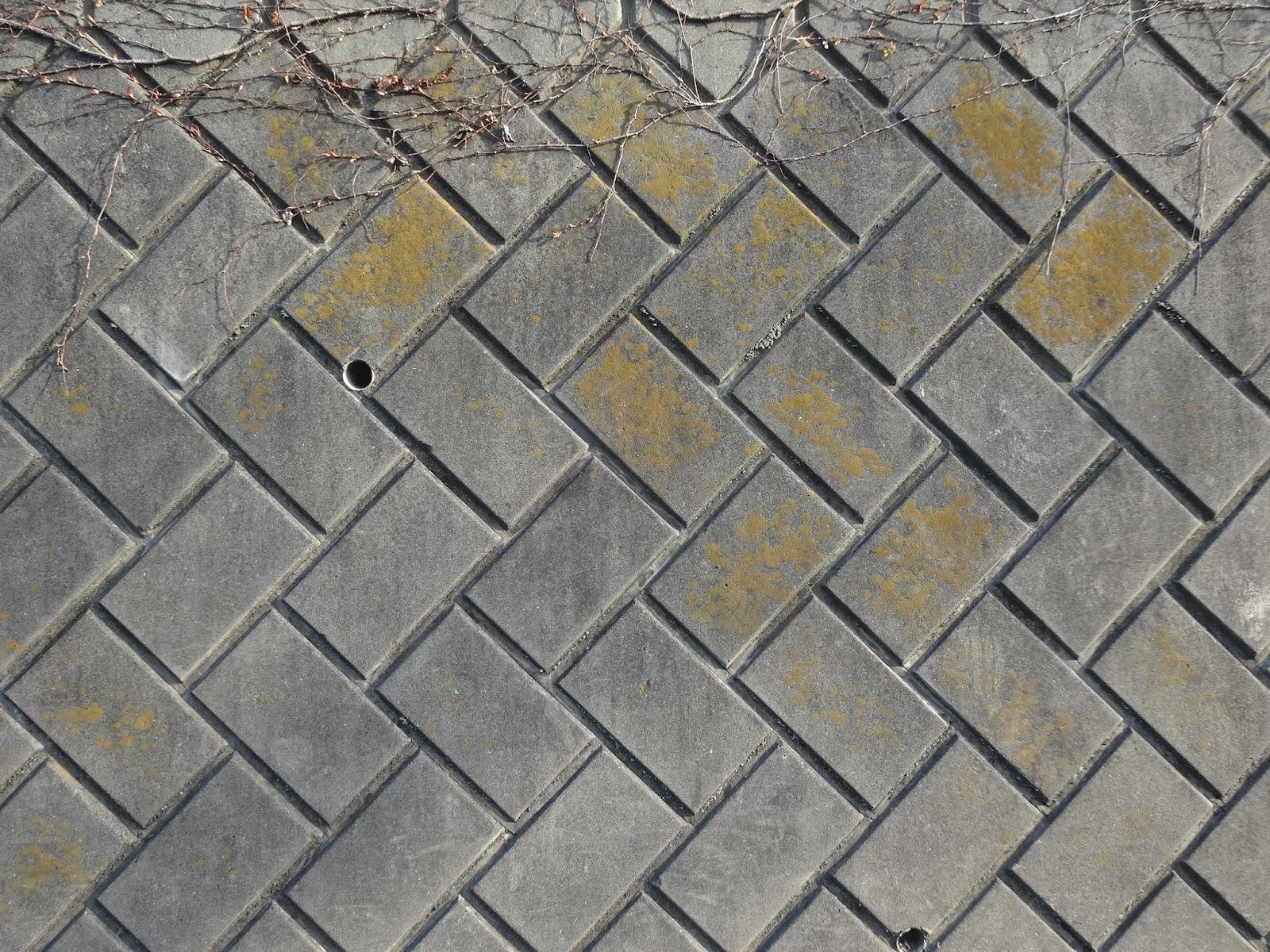 石垣,ブロック塀,土台〈著作権フリー画像〉Free Stock Photos