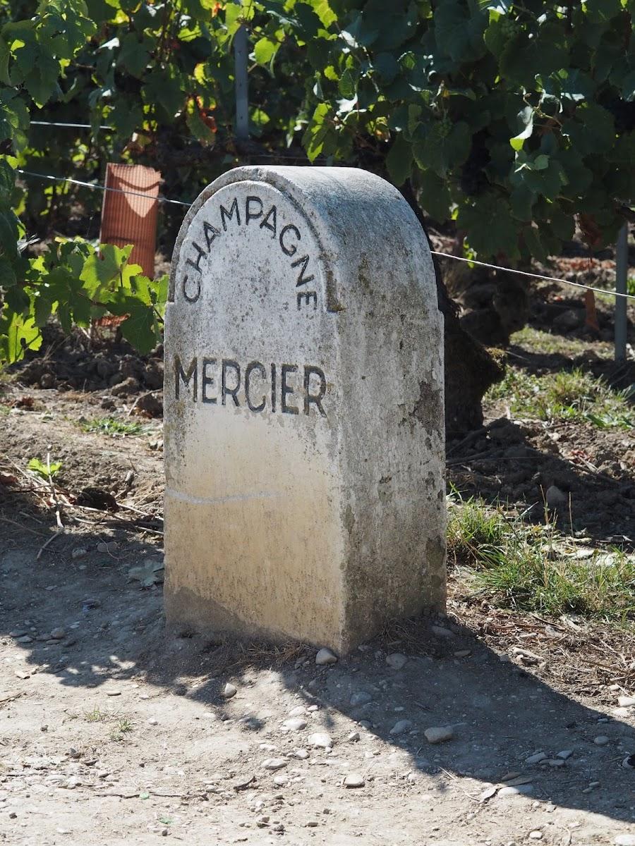 France travel blog Mercier champagne Priceless Life of Mine Over 40 lifestyle blog