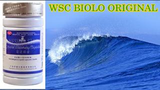agen wsc biolo cilacap-pangandaran