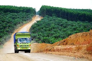 lowongan kerja perkebunan