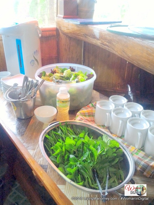 Garden Salad at Alomah's Place Bukidnon