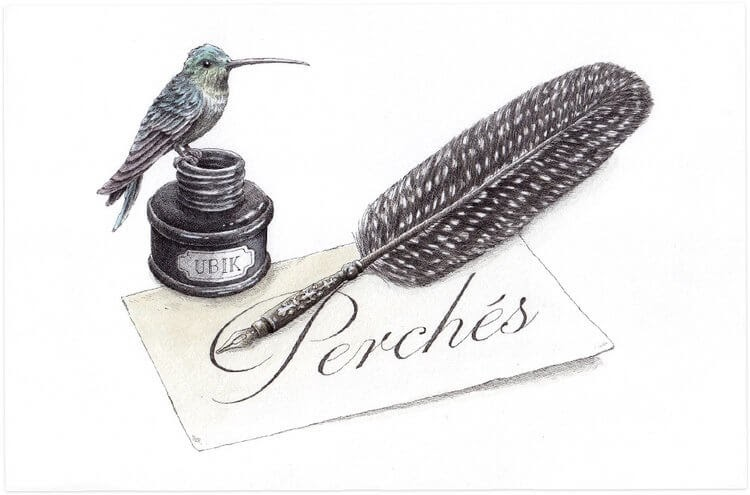 09-Encrier-Steeven-Salvat-Ink-Drawings-Birds-on-Vintage-Objects-and-Machines-www-designstack-co