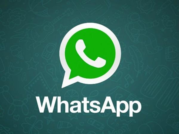 Grupo do WhatsApp com 256 pessoas