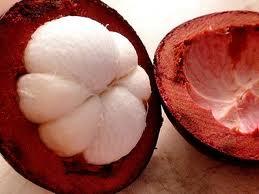 Manfaat dan Khasiat buah manggis